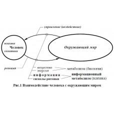 Ермак В.Д. «Толковый словарь аспектов информационного потока»