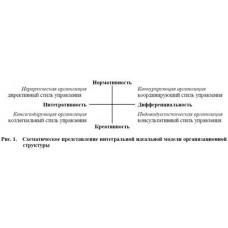 Instrument for Organization Structures Optimization