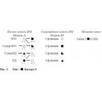 Characteristic of sensoric-logic introtim by Aushra Augustinavichute